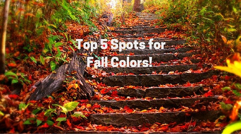 5 spots for fall color