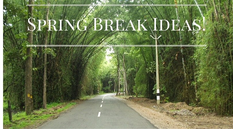 deas for things to do for Spring Break