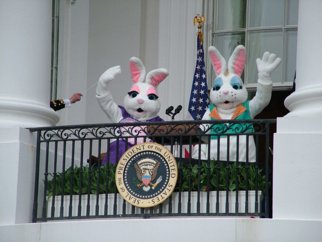 How to Get Your Ticket to the White House Easter Egg Roll