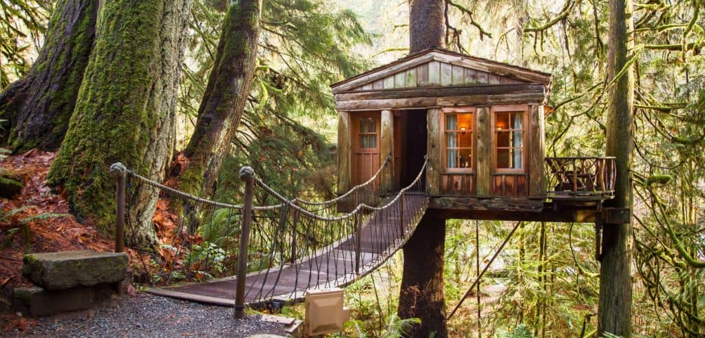 Treehouse Vacation Washington