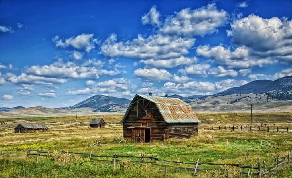 what to do in bozeman montana