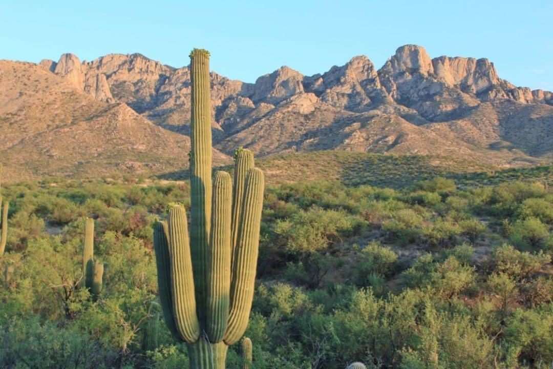 10 Must See Attractions in Arizona