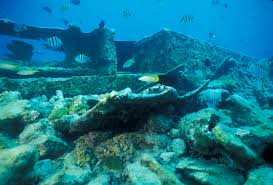 ship wreck site
