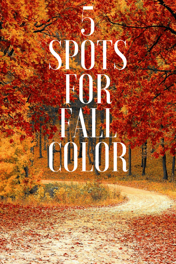 Where are the best spots for fall color? Take a look at our list of 5 spots for Fall color