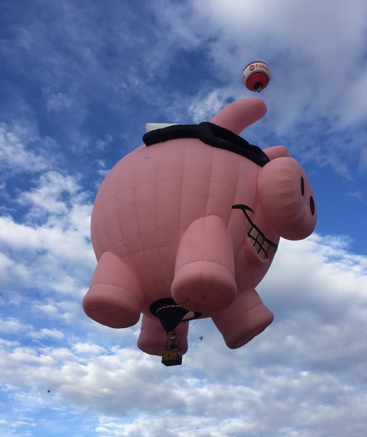 International Balloon Fiesta in Albuquerque NM When pigs fly