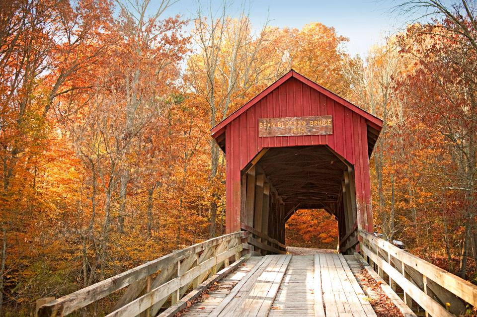 Fall Colors Brown Co. Indiana