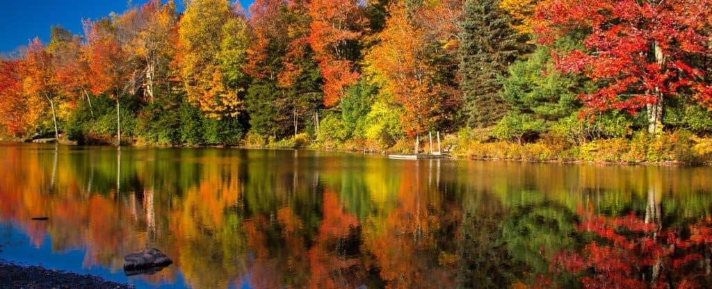 ponocos fall colors