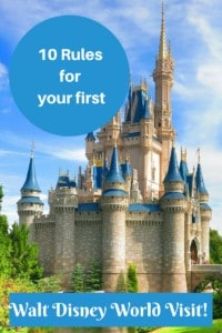 10 Rules for your First Walt Disney World Visit