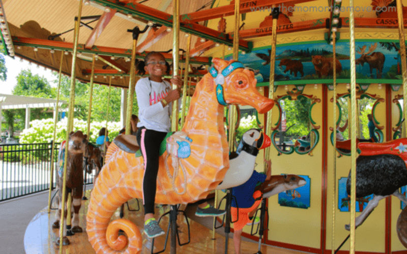 Detroit Zoo Carousel