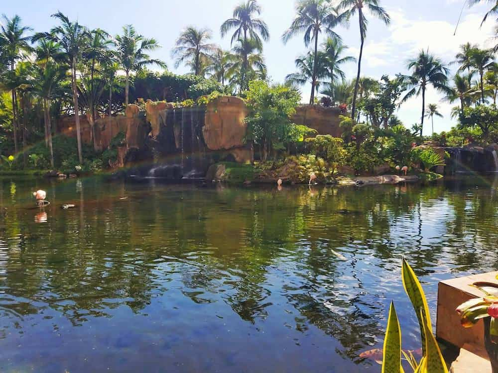 The Waterfall in the lobby of the Westin Maui Resort and Spa