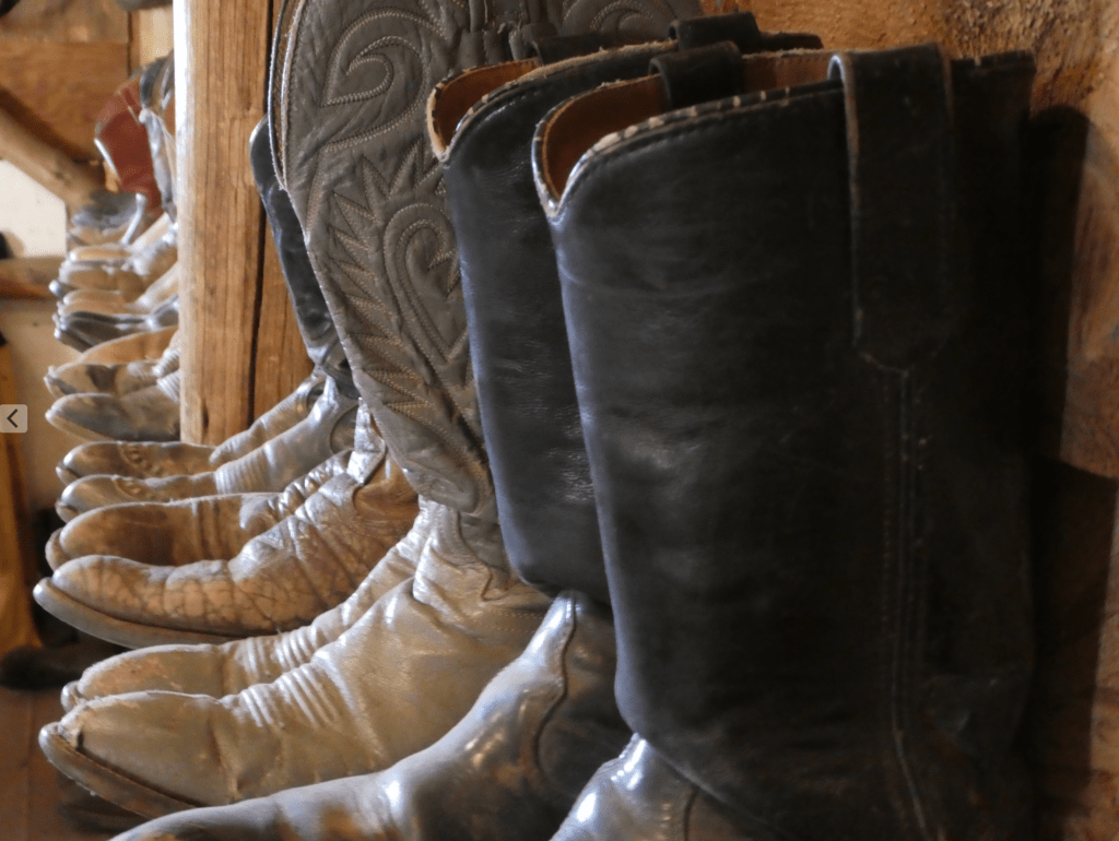 what to know about dude ranch vacations