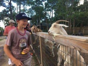 Gulf Coast Zoo, Gulf Shores Alabama