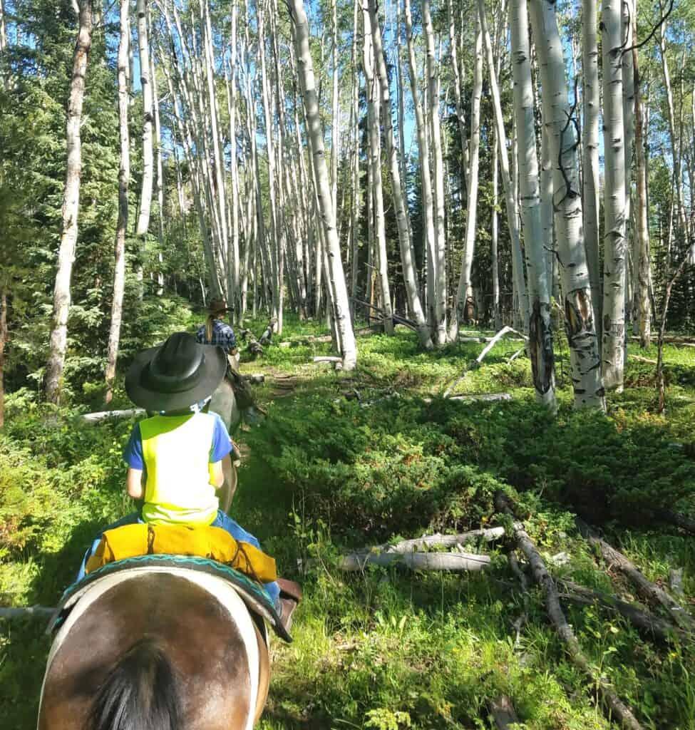horseback riding at Rawah Guest Ranch. The perfect social distancing activity.